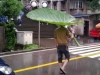 All_Natural_Umbrella_-_31-05-2012