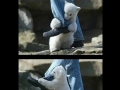Attacked_By_Bear