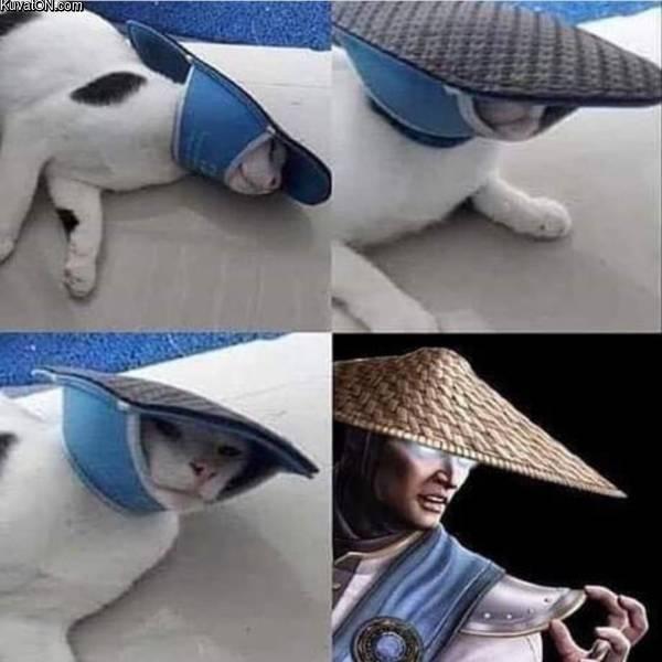 ninjacat05