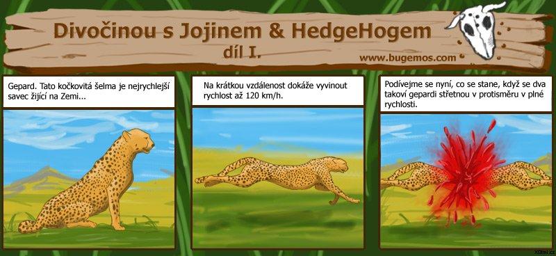 001-gepard