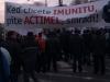 protest_gorila_imunita