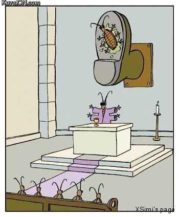bugs_church