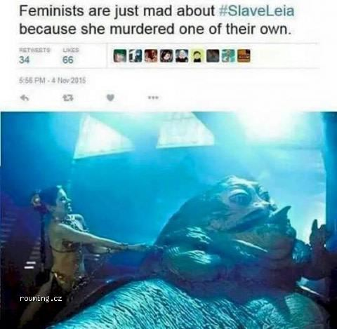 why_feminists_hate_Leia