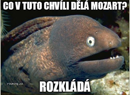ryba_na_dnes_02
