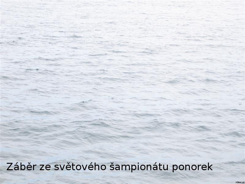 Zaber_ze_svetoveho_sampionatu_ponorek