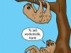 lenochodi