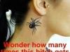 Wonder_how