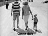 Genetics_10-02-2012