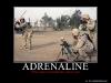 633578806157541813-adrenaline