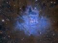 NGC7023hallas900