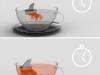 shark_tea