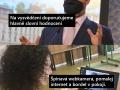 skolni_hodnoceni