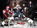 Dogfighting_-_09-04-2012