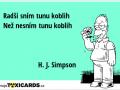 radsi-snim-tunu-koblih-nez-nesnim-tunu-koblih-h-j-simpson-2904