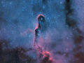 IC1396_Chad_Leader