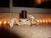 X-_Mr.Crab