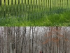 mirrored_fencing