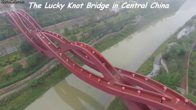 bridge_51