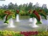 dolphins_garden_art